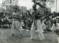 Prezentacja technik karate