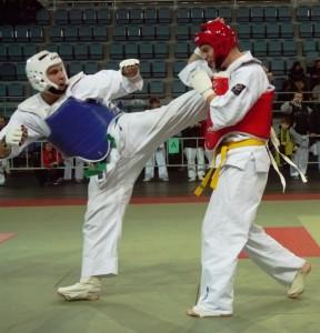 Puchar Polski 2011